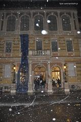 Sotto la neve 2 (quicksilv3r) Tags: italia novembre università trento duomo slogan ateneo proteste trentino manifesto 2010 lettere studenti manifestazione viaverdi sociologia corteo bassi urla auletta ddl agitazione gelmini quicksilv3r m3rcur1u5 atenei dellai universta trentoanomala