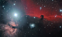 Horsehead & Flame Nebulae (Donegal Skies) Tags: longexposure ireland sky night stars long exposure skies space flame nebula northernireland astronomy horsehead donegal deepspace nebulae irishastronomy cg5 donegalsky celestronc8n Astrometrydotnet:status=solved canon1000d competition:astrophoto=2010 locationireland killygoron Astrometrydotnet:version=14400 brendanalexander episode2thesun Astrometrydotnet:id=alpha20101222400667 locationnorthernireland starsanddeepspaceepisode2thesunstarsanddeepspaceepisode2thesunstarsanddeepspace donegalskies wwwdonegalskiescom