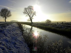 Wintersun (Ger Bosma) Tags: autumn sun sunlight mist snow colour fall beauty sunshine fog rural snowflakes countryside scenic hues getty mystical blueskies quite firstsnow sunrays gettyimages winterwonderland winterscape wisps dazzling winterlandscape pristine enchanting winterlandschap clearblue foglifting shroudedinfog eeldepaterswolde schelfhorst