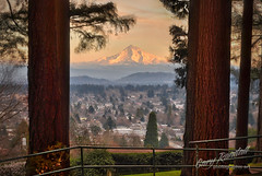 Mount Tabor Sunset (Gary Randall) Tags: city trees sunset mountain oregon portland view mthood mounthood citypark mounttabor mttabor garyrandall dsc53622