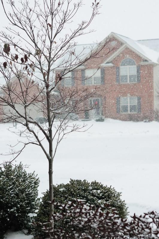 Snow, Finally Falling