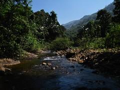 Stream View (Kumaravel) Tags: blue mountain green water canon landscape rocks stream bluesky kerala kollam palaruvi kumaravel canonixus95is