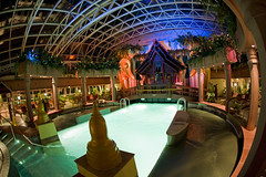 Jewel of the Seas (blueheronco) Tags: cruise pool ship interior solarium jeweloftheseas royalcaribbeancruises