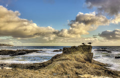 Two's Company (Didenze) Tags: light sky seagulls seascape clouds rocks explore hdr goldenhour hdrspotting