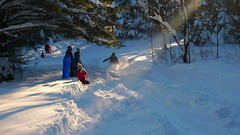 (burkhammon happenings) Tags: jeff matt katie sledding blake tala solveig
