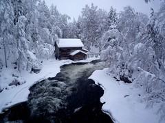 Pieni Karhunkierros (timo_w2s) Tags: winter snow ice finland river nationalpark kuusamo oulanka kitkajoki pienikarhunkierros juuma