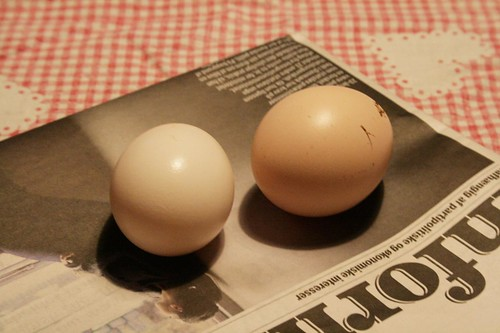 eggs from our little hens