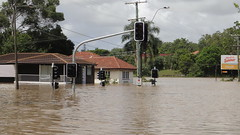 Flooded Houses . (sccart) Tags: day2 flooding photographer brisbane roadclosed brisbaneriver bywater 12111 roadfun everythingout floodedqueenslander up2thewindowsills drownedroad hasitcovered