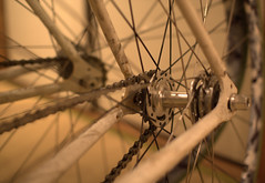 on wheels (Mr Fold) Tags: wheel fixed pista onwheels velocityrims selager ourdailychallenge