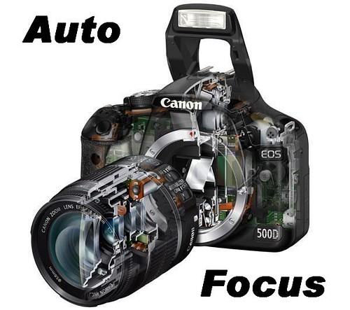 Level 1 Auto Focus