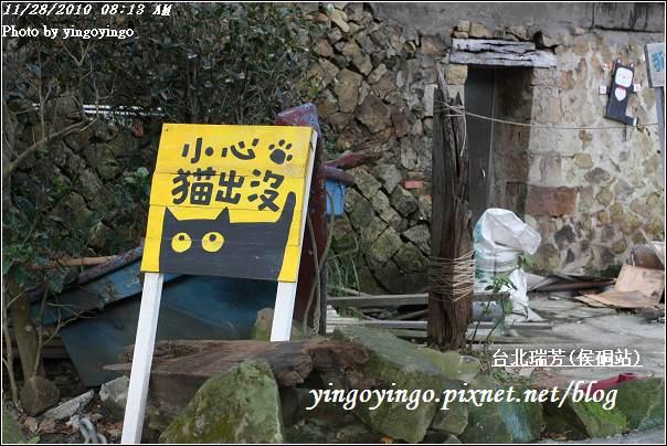 台北瑞芳(侯硐站)貓村20101128_I5572