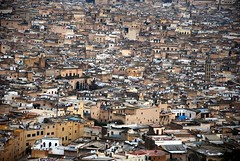 Trip to Morocco, Fes in winter -106 large (frieda ryckaert) Tags: morocco medina fes feselbali medinaoffes