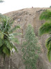 20090727_G9_IMG_2943 (Gogolcat) Tags: india climbing ramanagaram