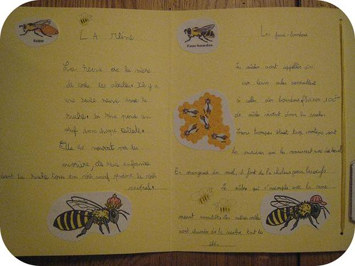 lapbook abeille 7
