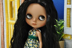 MAYA - Mas ela tem uma cara de Gabriela