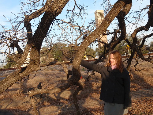 Me with Tree and Sunshine