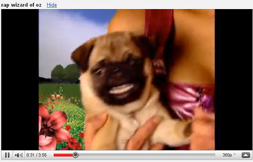 Pug_screenshot