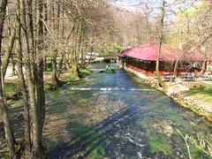 reka Bosna (jecadim) Tags: river sarajevo bosna reka vrelo bosniaandherzegovina bosnaihercegovina