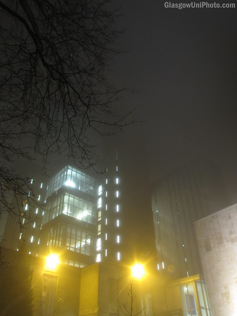 Towering Library in the Fog