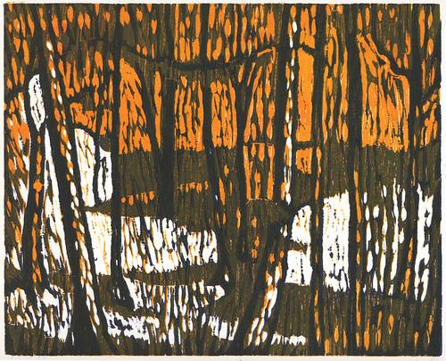 """""""Forest 1"""" (PR20110302-1)"""
