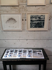 poster prints in Porthmeor Studios (Carolyn Saxby) Tags: stives beach artposters musselshells jarproject artwork porthmeor studios table display carolynsaxby