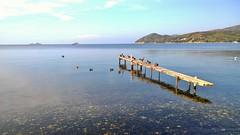 Isola d'Elba - Schiopparello (RONALD MENTI) Tags: isoladelba paesaggi landscapes italia italy