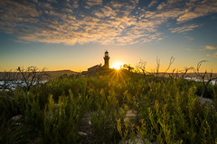 Palm Beach III (ⓨⓥⓔⓢ) Tags: barrenjoeylighthouse goldenhour landscape nature australia palmbeach sydney barrenjoey newsouthwales lighthouse