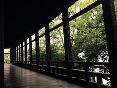 (uucoco) Tags: miyajima hiroshima japan green senjokaku tree itsukushima