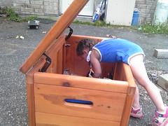 IMG00500 (vanygirl98) Tags: tori woodenbox picsfromsidekick