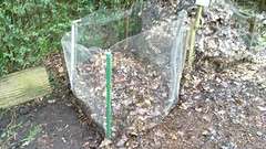 New leaf mould bay for Queen's Wood Organic Garden