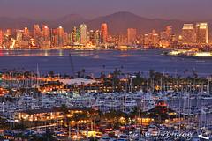 San Diego Skyline at Night (Ben Sheriff Photography) Tags: blue night san cityscape sandiego january diego hour southerncalifornia shelterisland sandiegobay sandiegoskyline downtownsandiego sandiegocalifornia sandiegomarina wwwbensheriffphotographycom bensheriffphotography