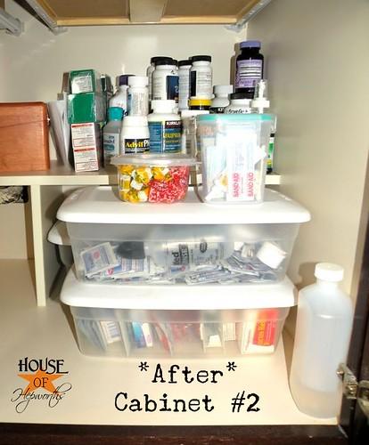 HoH-organization-craft-medicine-3