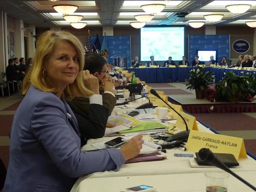 Joelle Garriaud Maylam au Forum Transatlantique de l'OTAN (3)