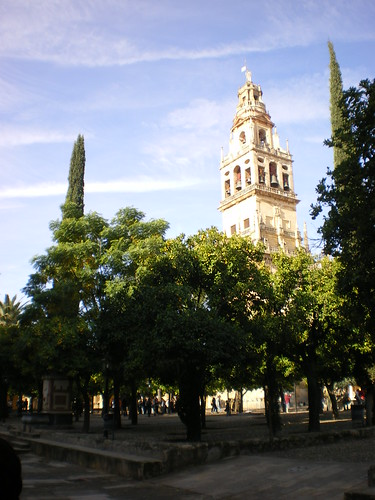 Patio de los Naranjos y Torre Catedral
