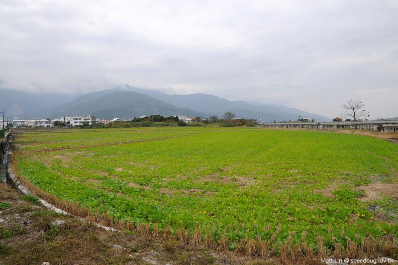 KAO_0095.jpg