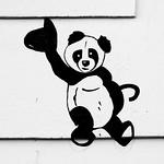 Disturbed Panda