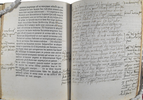 Annotations and leaf supplied in manuscript in Albertus Magnus [pseudo-]: Liber aggregationis