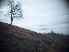 Conic_Hill_Walk_Jan2011_005 (jon pritchard) Tags: scotland lochlomond conichill