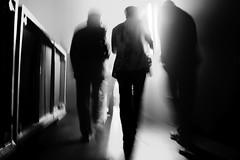 [フリー画像] 人物, 集団・グループ・群衆, 後ろ姿, モノクロ写真, ビジネス, 201101290100