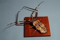 Acrocinus longimanus (Orifan) Tags: origami beetle lionelalbertino acrocinus