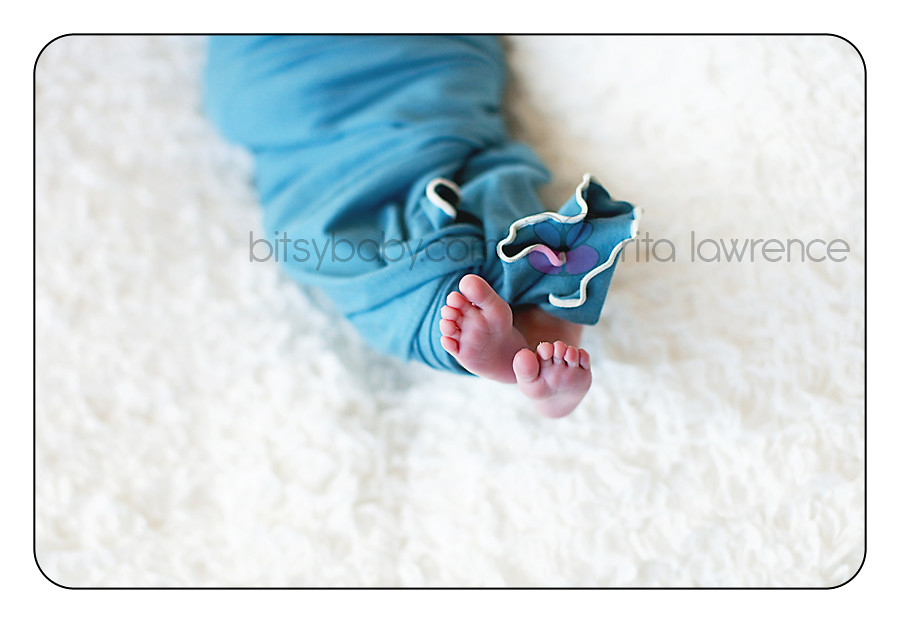 Bitsy Baby Newborn Photography 2