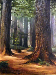 In Cathedral Grove (Explore) (FernShade) Tags: trees art vancouverisland pacificnorthwest oilpainting conifers cathedralgrove douglasfir oldgrowthforest ancienttrees explored macmillanprovincialpark