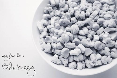 2 05 11 M4H bluberry