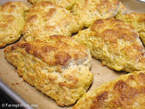 Meyer Lemon Scones 3