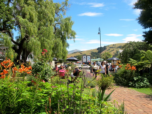 Pepper Tree, Akaroa