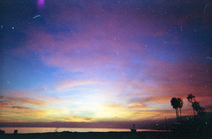 Malibu (scott w. h. young) Tags: ocean california pink blue sunset orange love film colors yellow 35mm pacific malibu palmtrees