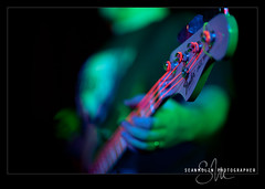 Orange You Glad? (Sean Molin Photography) Tags: musicians lowlight bass bokeh stage gig livemusic indiana depthoffield february rockshow rockband bassplayer electricbass stagelight brownsburg thedoghouse extremebokeh fenderjazzbass extremedof drstrings drneon bigdaddycaddy neonstrings nikonafsnikkor85mmf14g nikon85mmf14afs thedoghousesportsbar drneonstrings 70sjazzbass