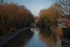 Nottingham - Beeston Canal (trunks_pj) Tags: nottingham trees water canal nikon 1855mm dslr footpath nottinghambeestoncanal