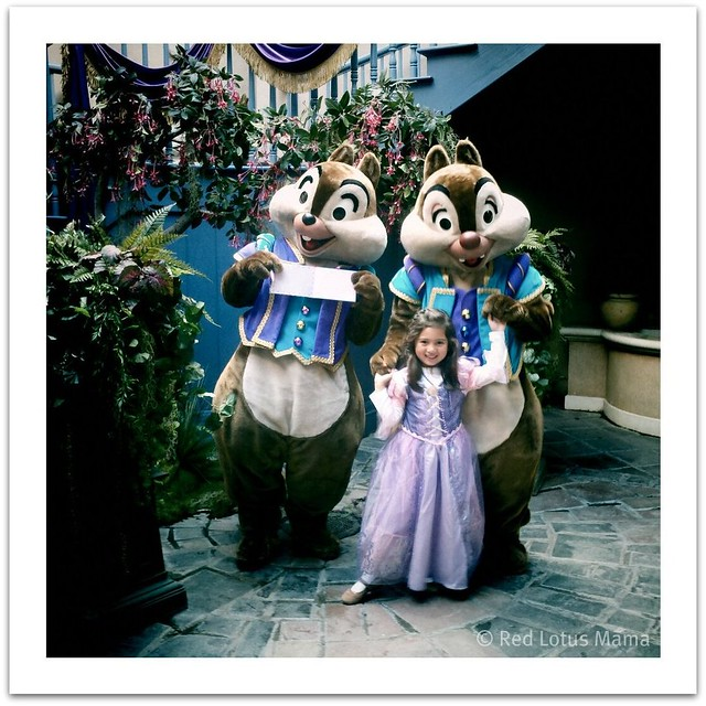 Princess D Mardi Gras Chip & Dale