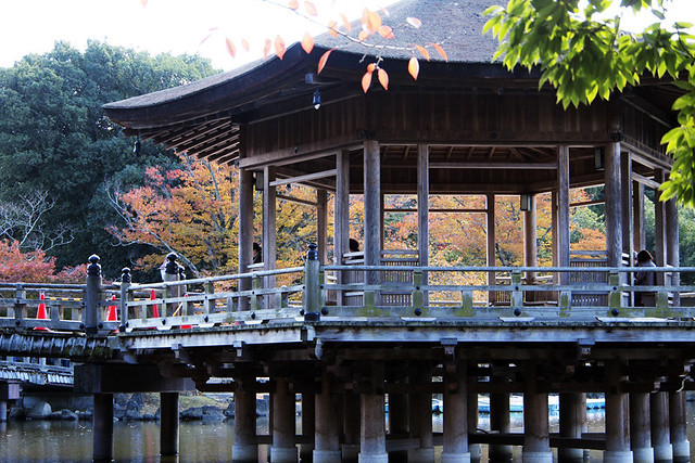 20101116_114426_奈良公園_浮見堂